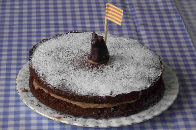 Chocolate Sponge Cake with Cat and Catalonia Flag