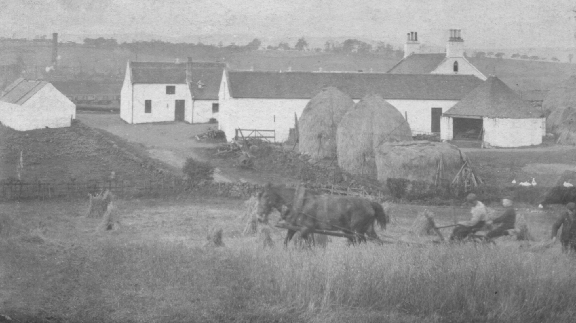 old farmyard, hay ricks and horses